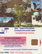 TARJETA TELEFONICA DE RUSIA (664).TIRADA 2000 - Rusia
