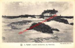 Mobiele Landduinen - Herentals - Herentals