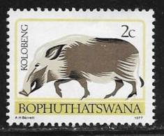 Bophuthatswana Scott # 6a Unused Part Gum Perf 14 Bush Pig,1977 - Bophuthatswana