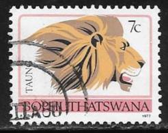 Bophuthatswana Scott # 11 Used Perf 12 1/2 Lion,1977 - Bophuthatswana
