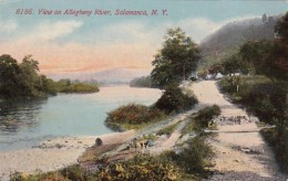 New York Salamanca View On Allegheny River 1912