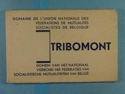 Carnet 12 CPA Tribomont Domaine De L'Union Nationale Des Fédérations Des Mutualités Socialistes De Belgique - Herve