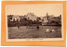 Remich 1920 Postcard - Remich