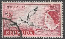 Bermuda. 1953-62 QEII. 8d Used. SG 143a - Bermuda