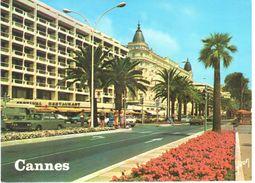 Cannes - Côte D'Azur - La Croisette, Le Festival Et Le Carlton - Cannes