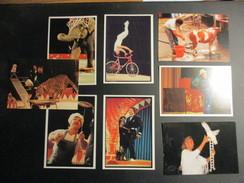 Lot De 8 CP Thème Le Cirque - Zirkus