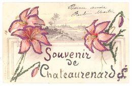 Cpa Souvenir De Chateaurenard ( Fantaisie Fleurs, Ajoutis Paillettes ) - Chateaurenard