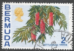 Bermuda. 1970 Flowers, 2c Used. SG 250 - Bermuda