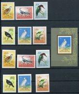 1963- VIETNAM NORD-BIRDS -LOT-PERF.+IMPERF.+ SS.. -M.N.H.- LUXE !! - Vietnam