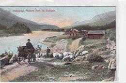 Hallindal - Mellem Naes Og Rolfshus      ( A-59-120117) - Norvegia