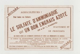 BUVARD LE SULFATE D' AMMONIAQUE - Farm