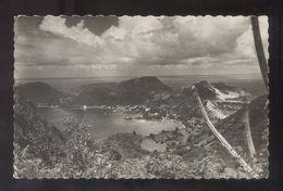 Les Saintes. Terre De Haut *Panorama Et Cactus Cierge...* Nueva. - Guadeloupe