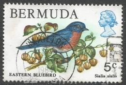 Bermuda. 1978 Wildlife, 5c Used. SG 389 - Bermuda