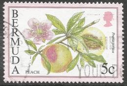 Bermuda. 1994 Flowering Fruits. 5c Used. SG 792 - Bermuda