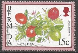 Bermuda. 1994 Flowering Fruits. 15c Used. SG 795 - Bermuda