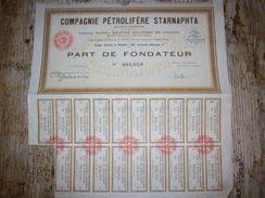 Action ( Compagnie Pétrolière Starnaphta ) - Pétrole