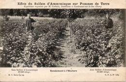 81 Cambounet-sur-le-sor Effets Du Sulfate D'Ammoniaque - Animation - Francia