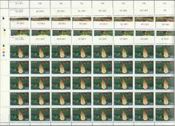 1979 Malta FAUNA MARINA  MARINE FAUNA 50 Serie Di 4v. (588/91) In Foglio MNH** Sheets - Malta