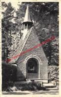 Kapelleke Vyverslei - Kapellenbos - Kapellen