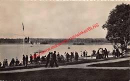 Lac De Virelles - Jury Des Régates - Chimay - Chimay