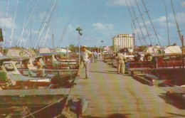 Florida West Palm Beach Marina