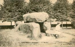 MENHIR(MEUDON) - Dolmen & Menhirs