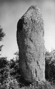 MENHIR(LE BERNARD) - Dolmen & Menhirs