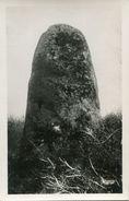 MENHIR(SAINT NICOLAS DU PELEM) - Dolmen & Menhirs