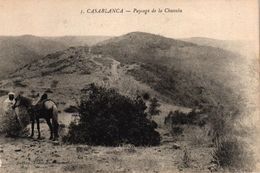 MAROC - CASABLANCA - PAYSAGE DE LA CHAOUIA - Casablanca