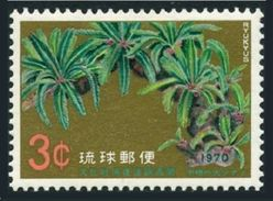 RyuKyu 205 Block/4,MNH.Michel 232. Protection Of Nature 1970:Great Cycad Of Une. - Environment & Climate Protection