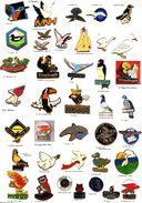 Divers-Oiseaux_Colombe_Rapace_Hibou_Autres__ 2 Pin's Aux Choix Sur 38 Présentés_ - Animals
