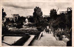 MAROC - RABAT - LE JARDIN DES OUDAIAS - Rabat