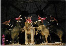 CPM Cirque Circus Cirk éléphant Non Circulé édition L'aventure Carto N° 29 KRONE - Circus