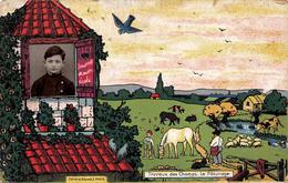 Travaux Des Champs - Le Pâturage - Illustration Et Photo D'un écolier - Cultures