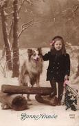 CPA - Fille Avec Son Chien Colley - Paysage D'hiver Houx - Chiens