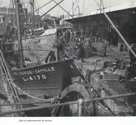 1950 - Iconographie - Lorient (Morbihan) - Le Quai De Débarquement Du Poisson - FRANCO DE PORT - Ohne Zuordnung