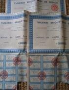 Maroc Lot 9  Tuileries Briqueteries De Fedala Actions Avec Coupons - Industrie