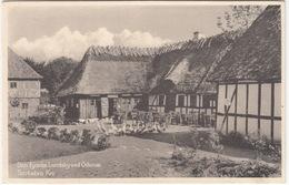 Den Fynske Landsby Ved Odense - Sortebro Kro  -  (Danmark / DK) - Goose/Gens/Ganzen/Oie - Denemarken