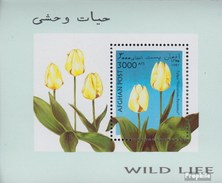 Afghanistan Block93 (complete Issue) Unmounted Mint / Never Hinged 1997 Tulpenzüchtungen - Afghanistan