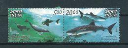 2009 India Pair Sealife,animals,dieren,tiere Used/gebruikt/oblitere - India