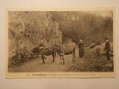Carte Postale -  FRESSELINES (23) - Vue Prise Sur Un Chemin Au Bord De La Petite Creuse (1979) - Sonstige Gemeinden