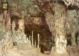 Iles Baleares - Cueva Dels Hams - Premières Visions - Subirats Casanova Nº 1660 - 3181 - Espagne