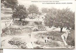 Distillation De La Lavande Dans Les Alpes  De La PARFUMERIE BRUNO COURT , GRASSE ( Alambics ) 1908 - Grasse