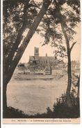 L40B177 - Nevers - La Cathédrale Vue à Travers Les Acacias - Collection Roube N°314 - Nevers