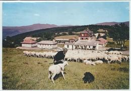Muckenbach-Maison Familiale Et Colonie De Vacances (CPM) - Sonstige Gemeinden