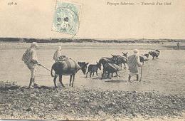 Algerie, Paysage Sahariens, Traversie D'un Oued - Algerije