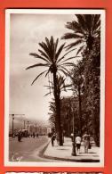 GAJ-18  Alger Square Bresson Et Boulevard Carnot. Circulé Sous Enveloppe En 1939 - Alger