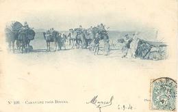 Algerie, Caravane Pres De Biskra - Biskra
