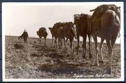"1950 SIRIA , TARJETA POSTAL CIRCULADA ENTRE BEIRUT Y HAMBURGO , "" SYRIE - UNE CARAVANE"" - Siria"