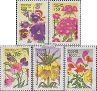 Russland 480-484 (complète.Edition.) Neuf Avec Gomme Originale 1996 Fleurs De Jardin - 1992-.... Fédération